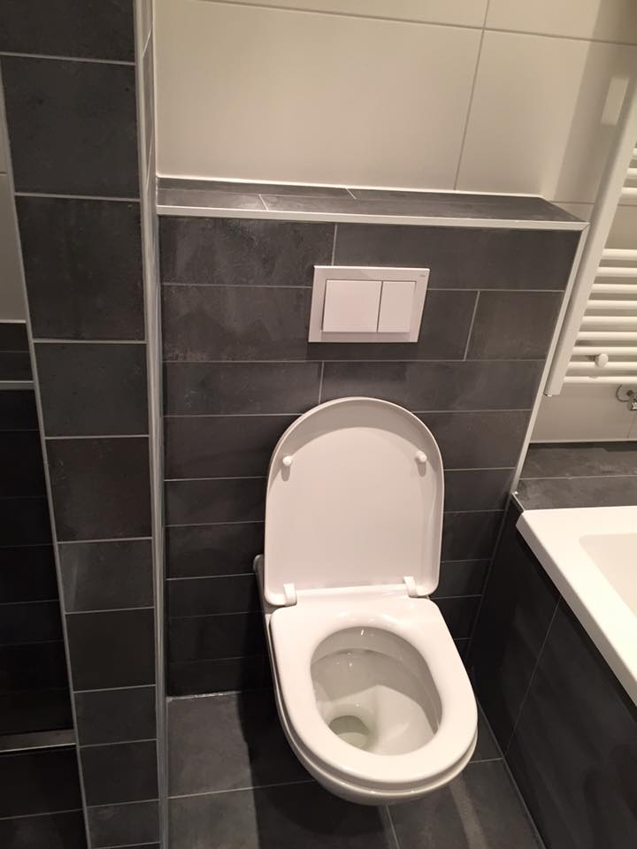 Toilet verbouwen voorbeelden ii12 aboriginaltourismontario for Tegels wc voorbeelden
